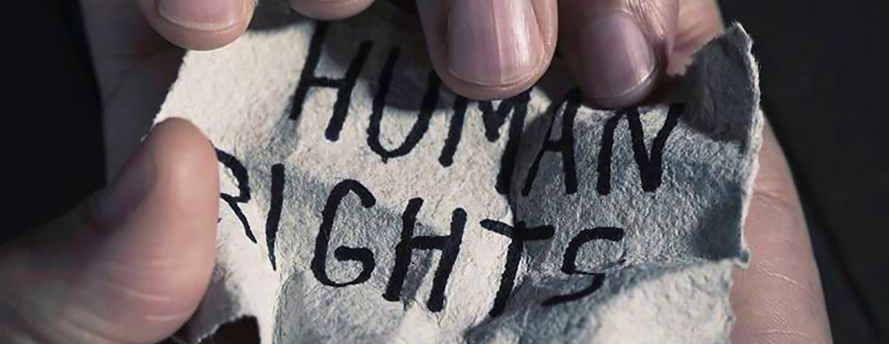 """L'ÉCLIPSE DES DROITS DE L'HOMME. 70 ans après la """"Déclaration universelle des droits de l'homme"""""""